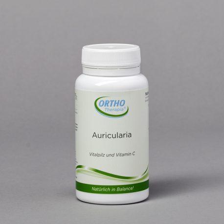 auricularia-polytricha-vitalpilz