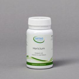 HERICIUM = Igelstachelpilz